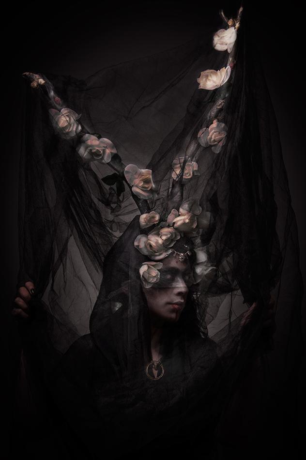 Veil of Horns